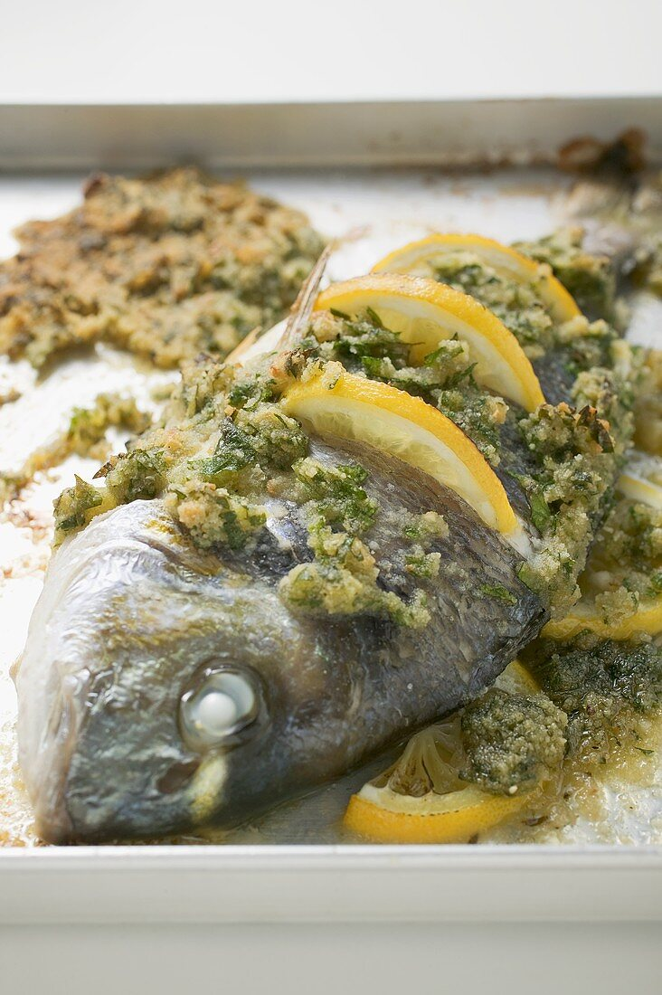 Roasted sea bream with herb crust and lemon slices
