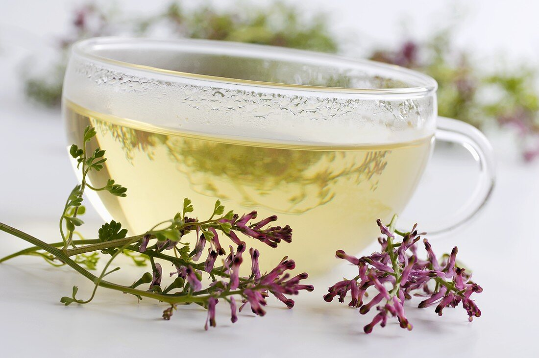 Cup of herbal tea surrounded by fumitory flowers
