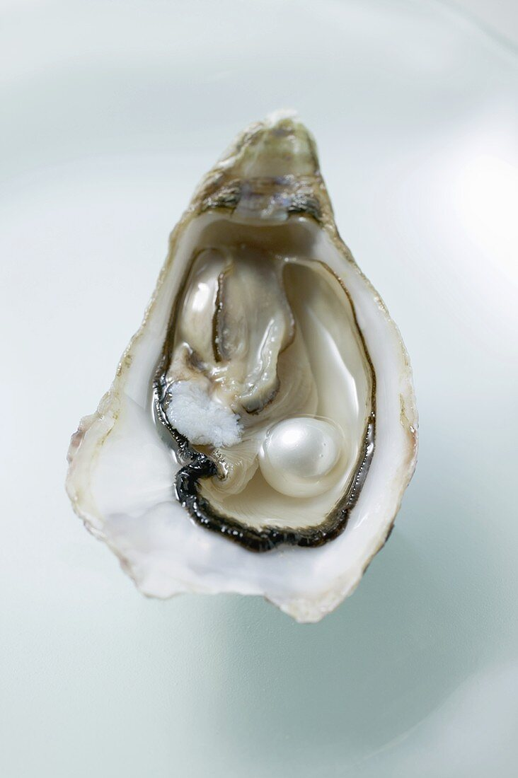 Fresh oyster with pearl (overhead view)