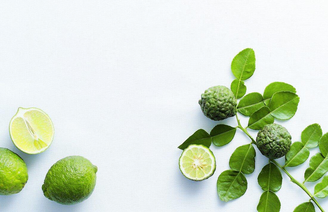 Limes and kaffir limes