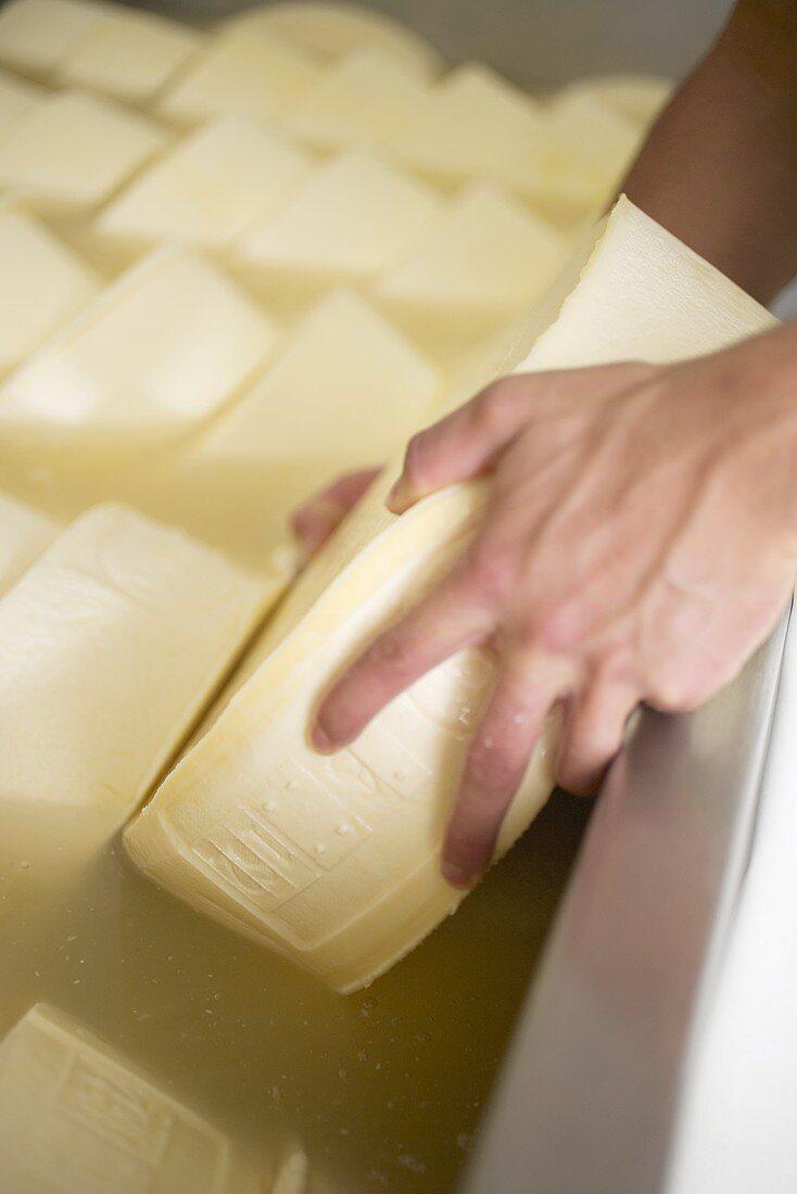 Cheeses in salt bath