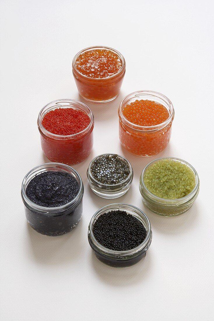 Various types of caviar in jars