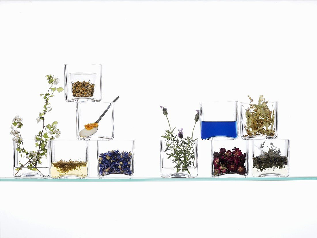 Medicinal plants & flowers (the basis for natural cosmetics)