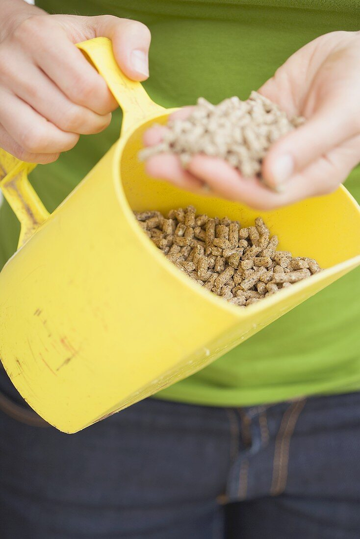 Woman holding dry chicken feed