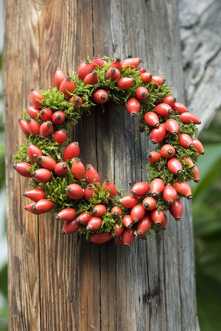 Wreath of moss and rose hips on a wooden post
