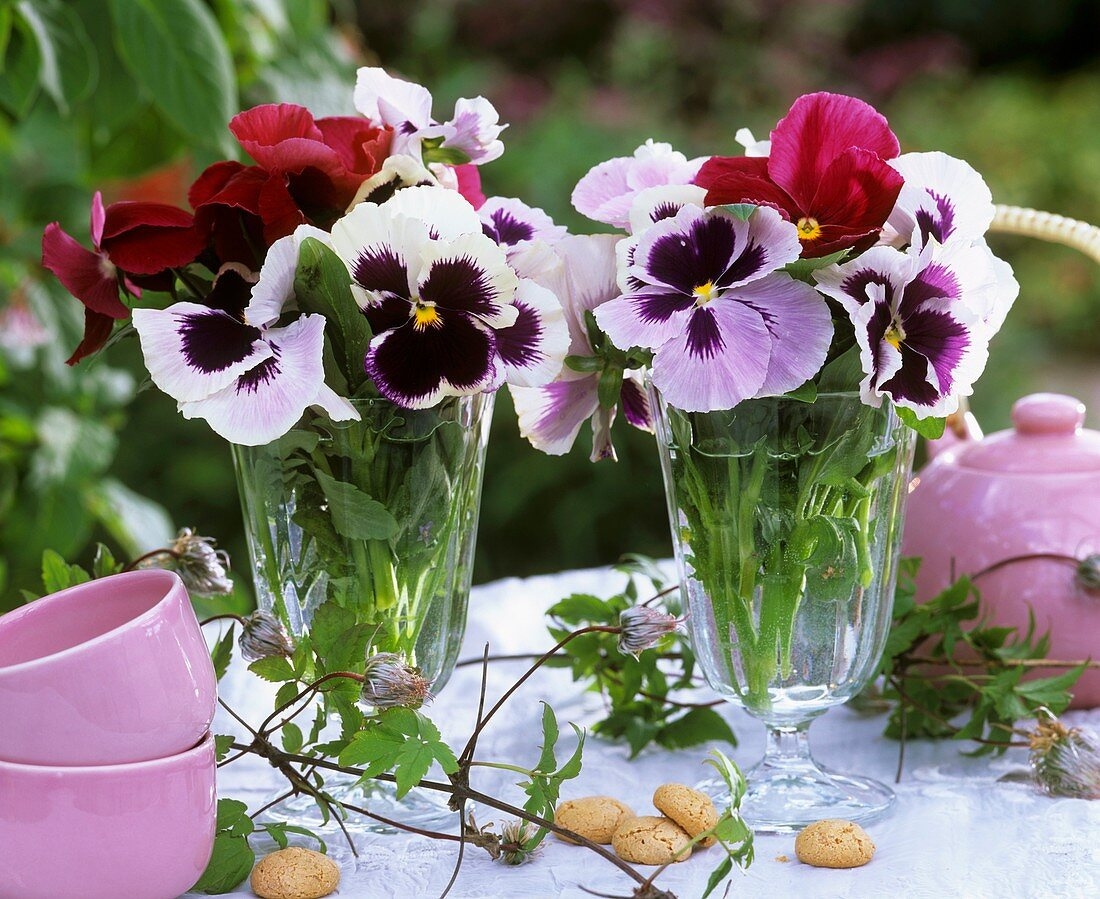 Pansies in glass vases on table with tea things