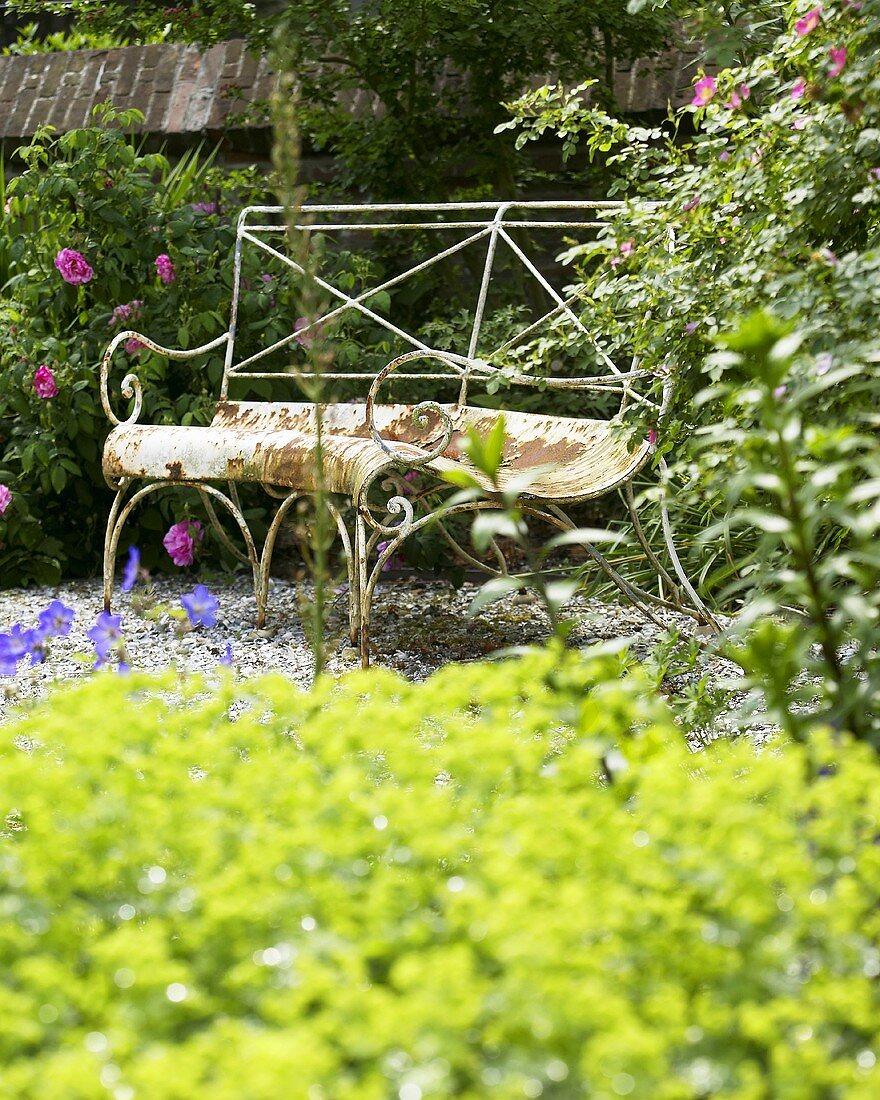 Rusty garden bench