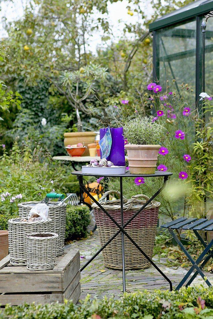 Garden scene with greenhouse
