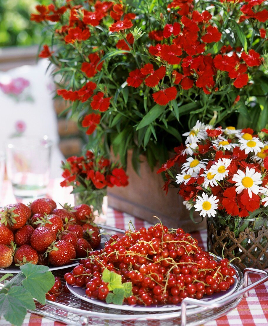 Redcurrants and strawberries, carnations and marguerites