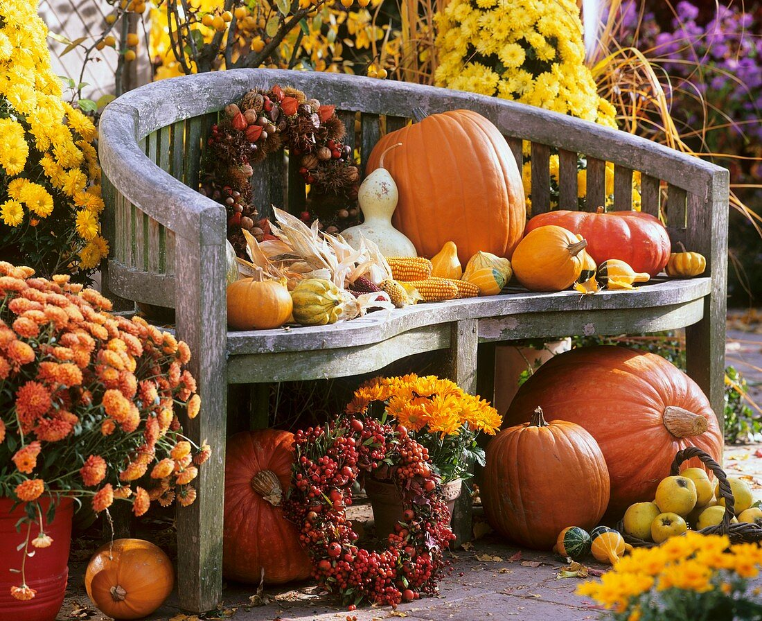 Autumnal harvest still life