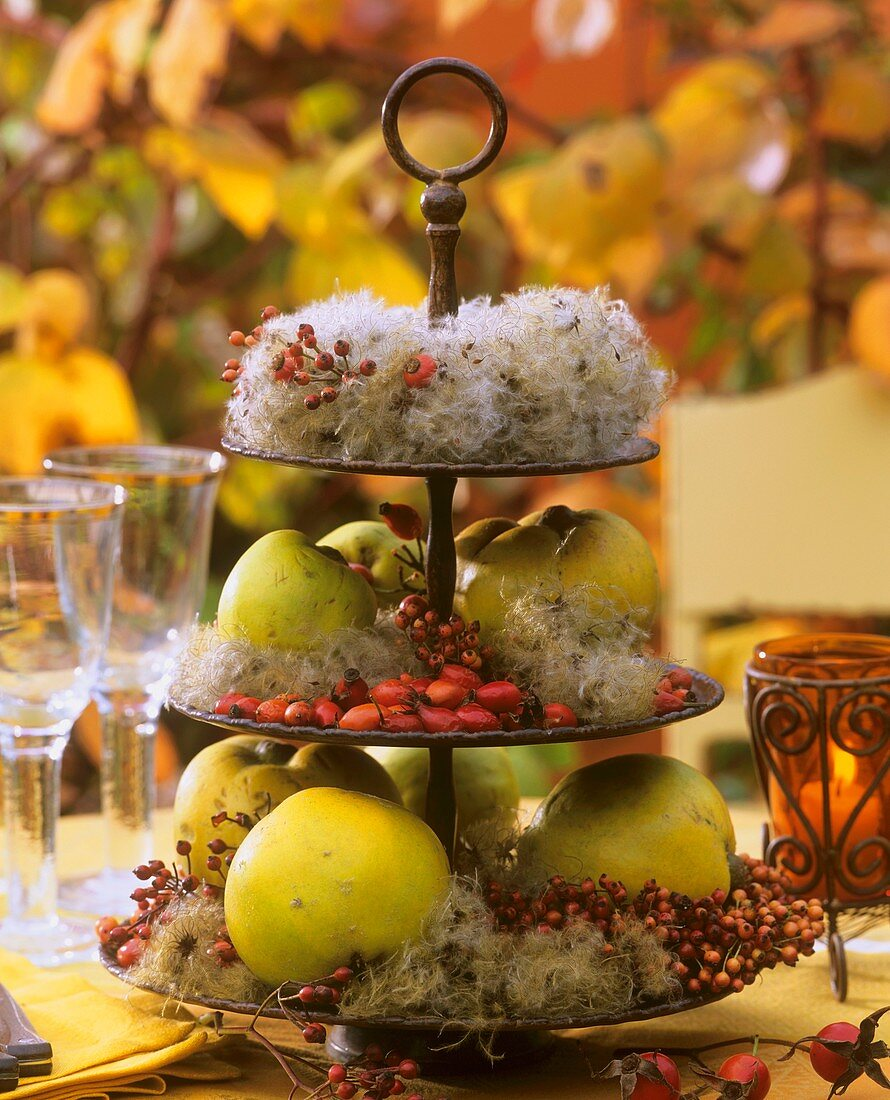 Stand decorated with quinces, rose hips & old man's beard
