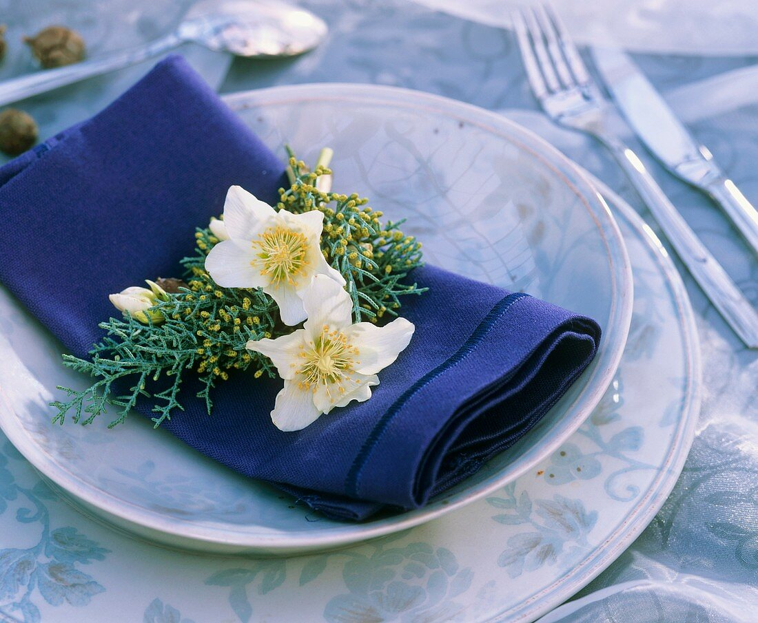 Serviettendeko mit Christrosenblüte und Arizonazypresse