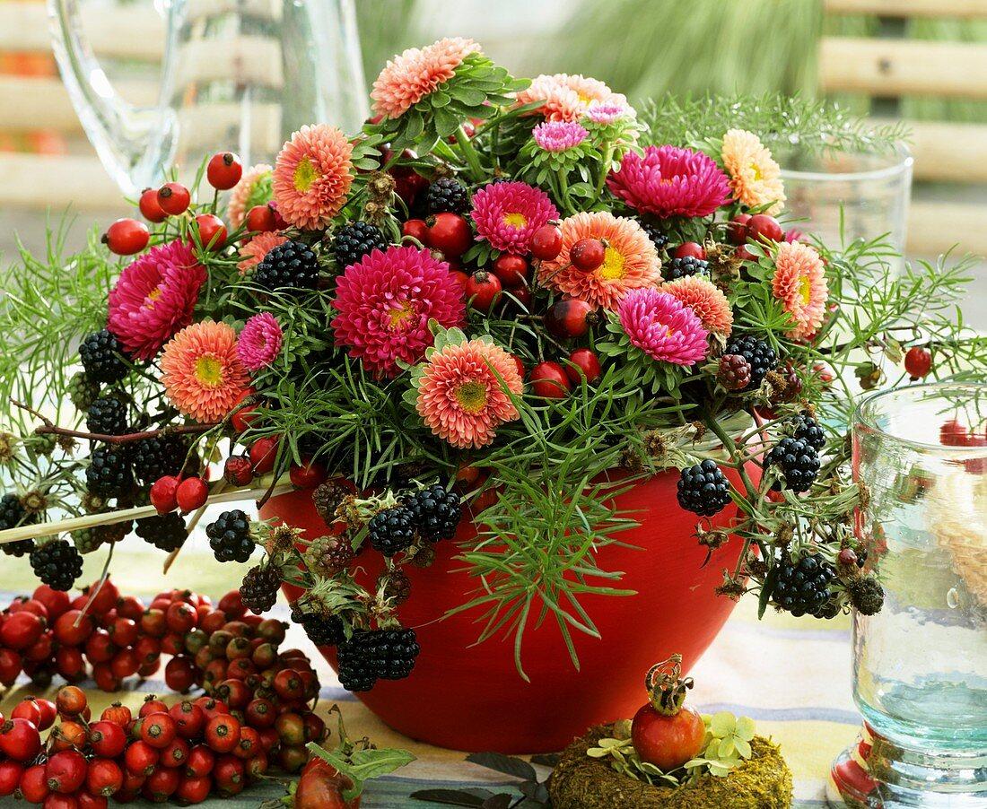 China aster (Callistephus), rose hips, blackberry, asparagus