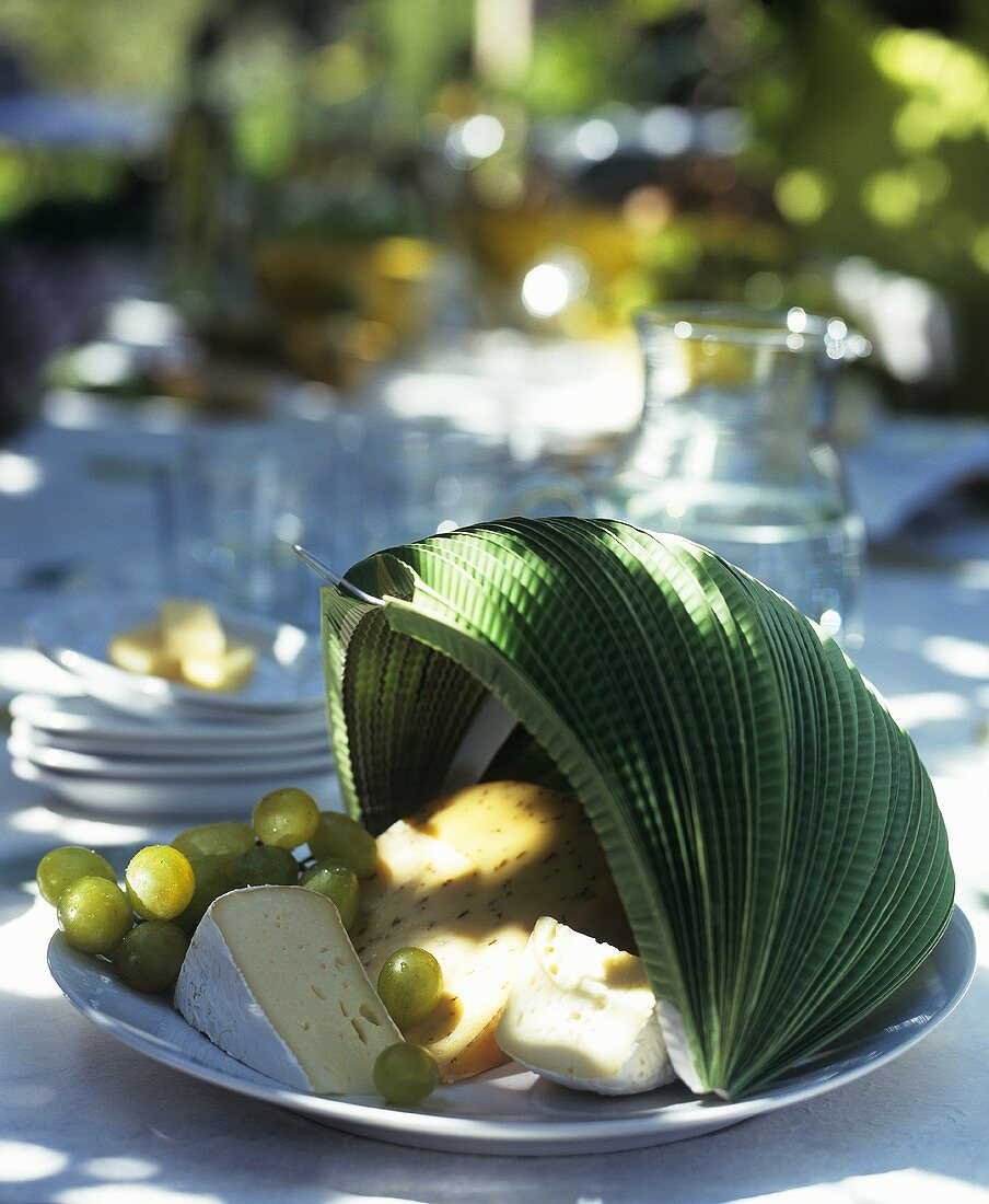 Cheese platter with grapes and paper lantern cover