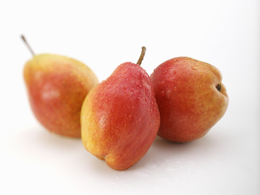 Three pears (variety 'Red Williams') with drops of water