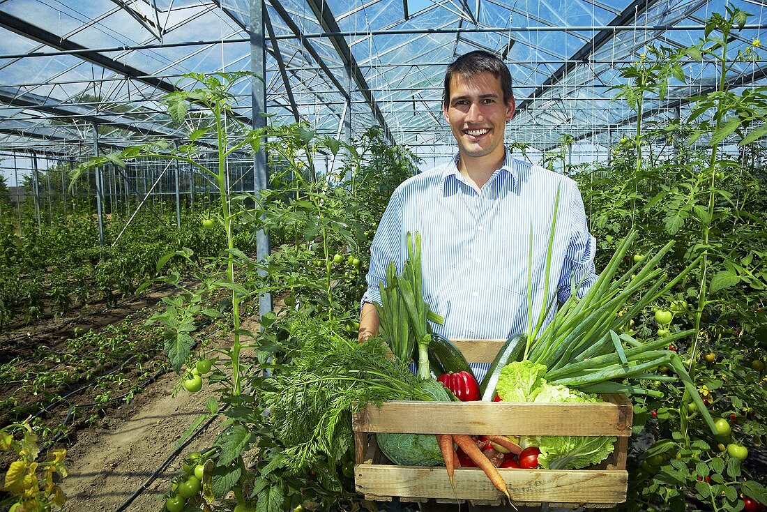 Grower in greenhouse carrying crate of vegetables