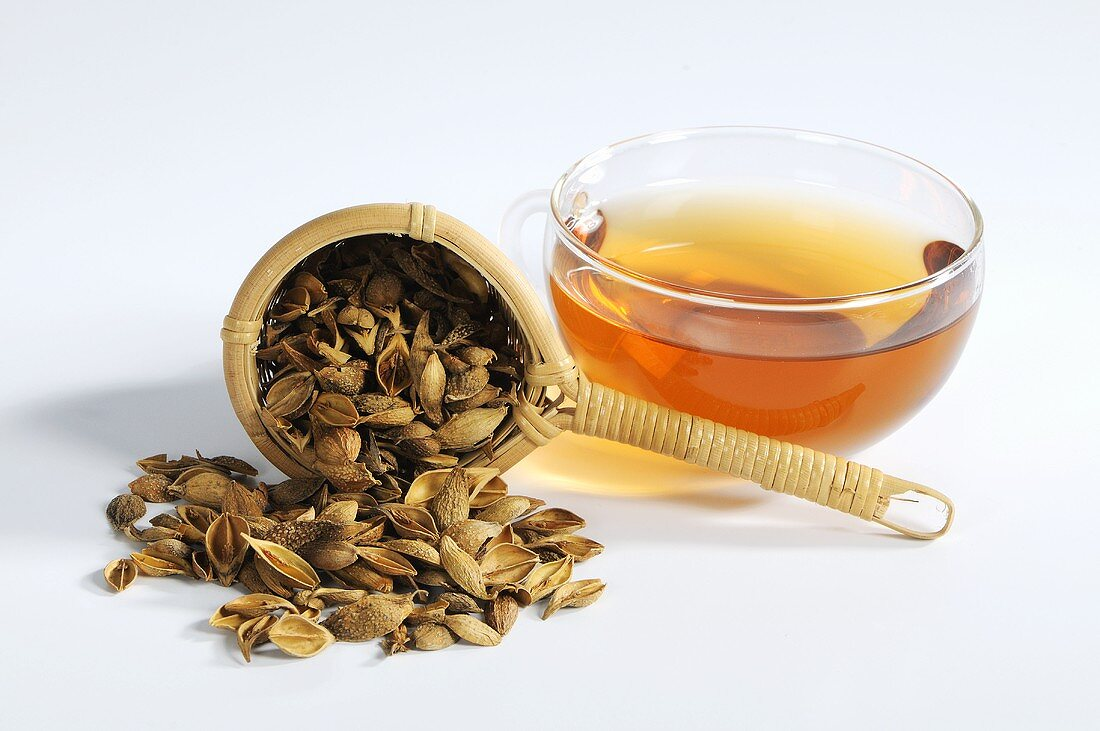 Dried forsythia fruits in tea strainer with cup of tea