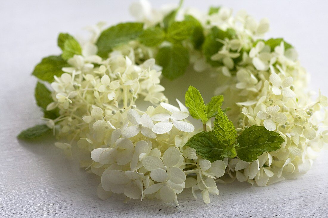 Wreath of hydrangea flowers and mint