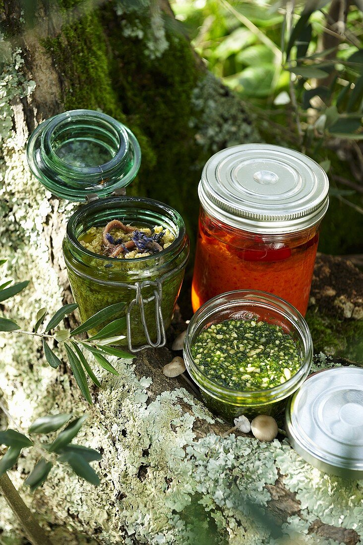 Tapenade, red and green pesto in jars