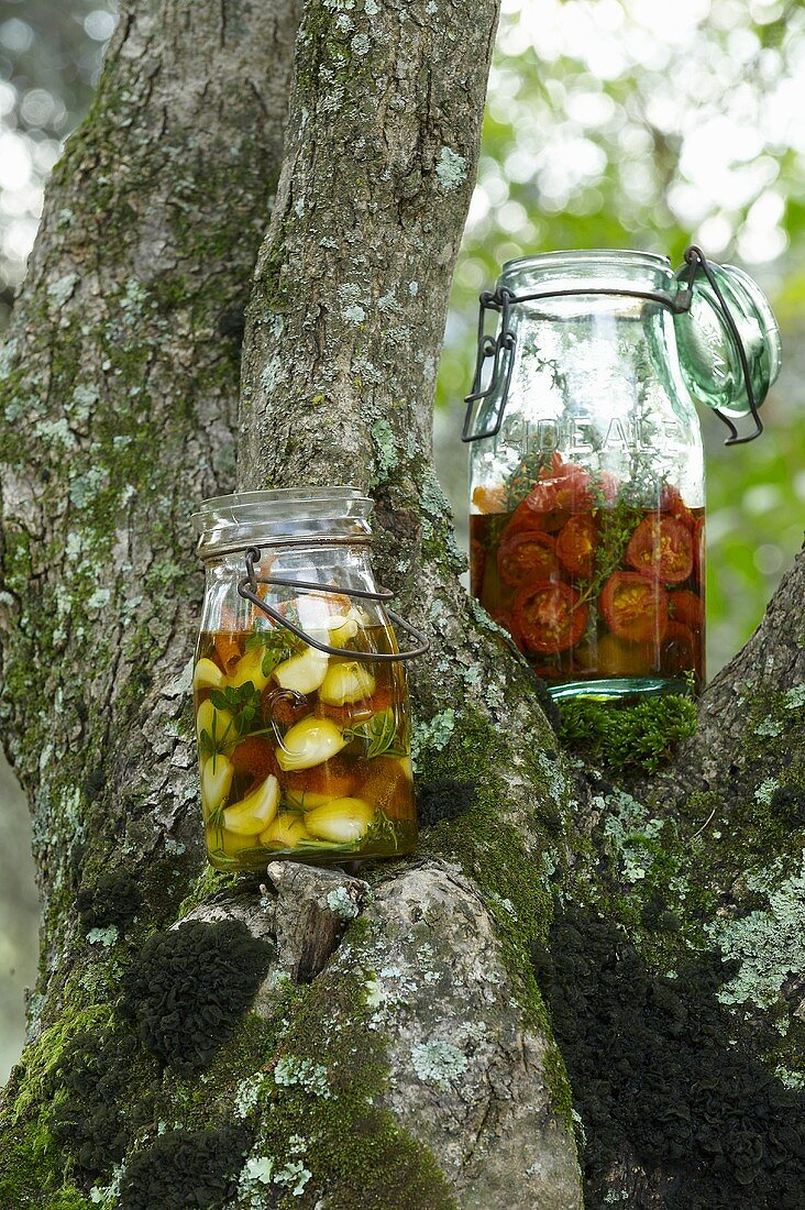 Garlic and tomatoes pickled in oil