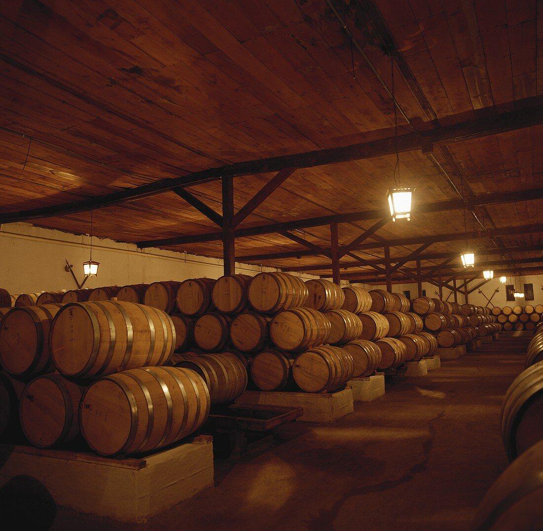 Wine cellar of Coucha y Toro Wine Estate, Chile