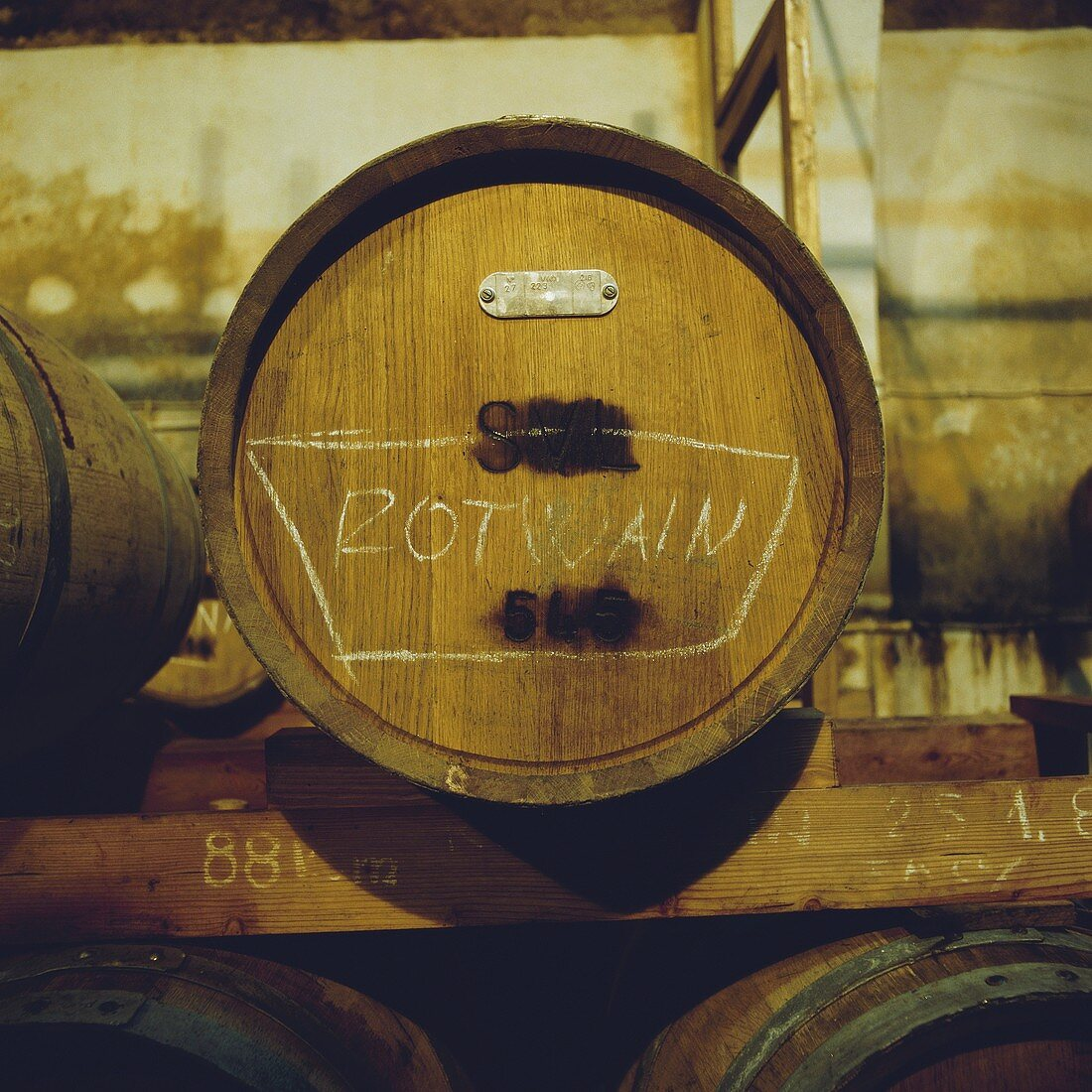 Red wine barrels in a wine cellar, Slovin, Slovenia