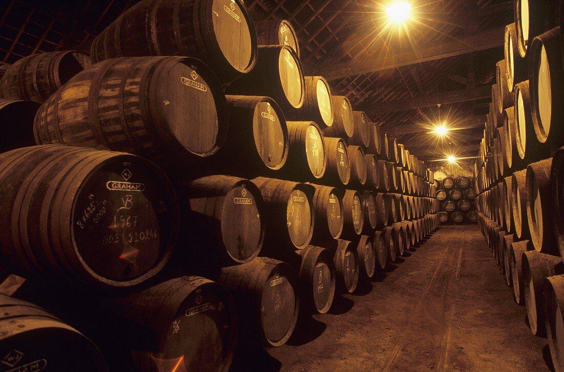 Port barrels, Graham's Lodge, Vila Nova de Gaia, Portugal