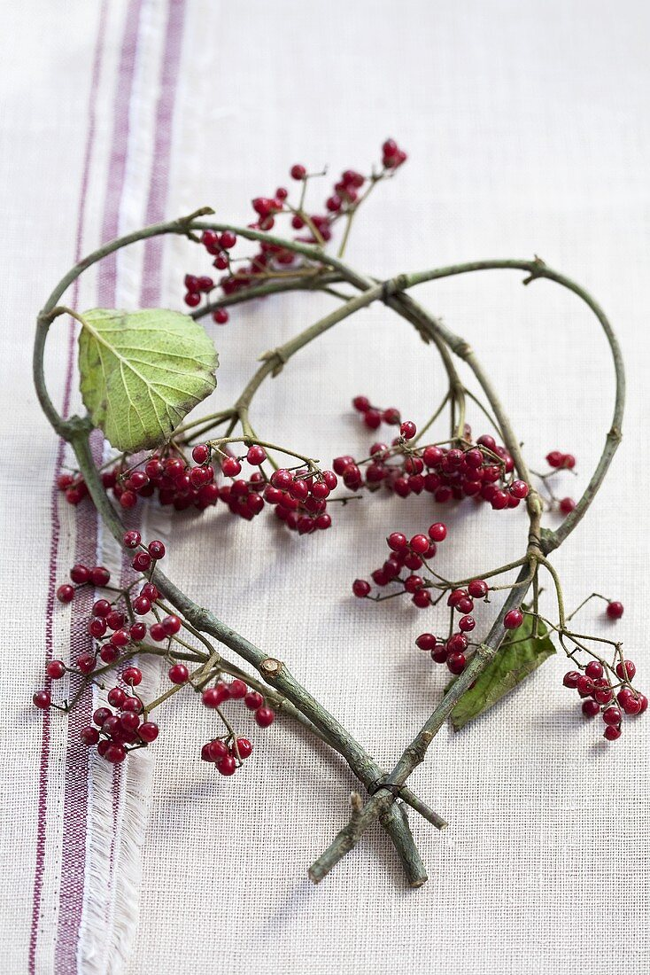 Viburnum twigs with berries forming a heart