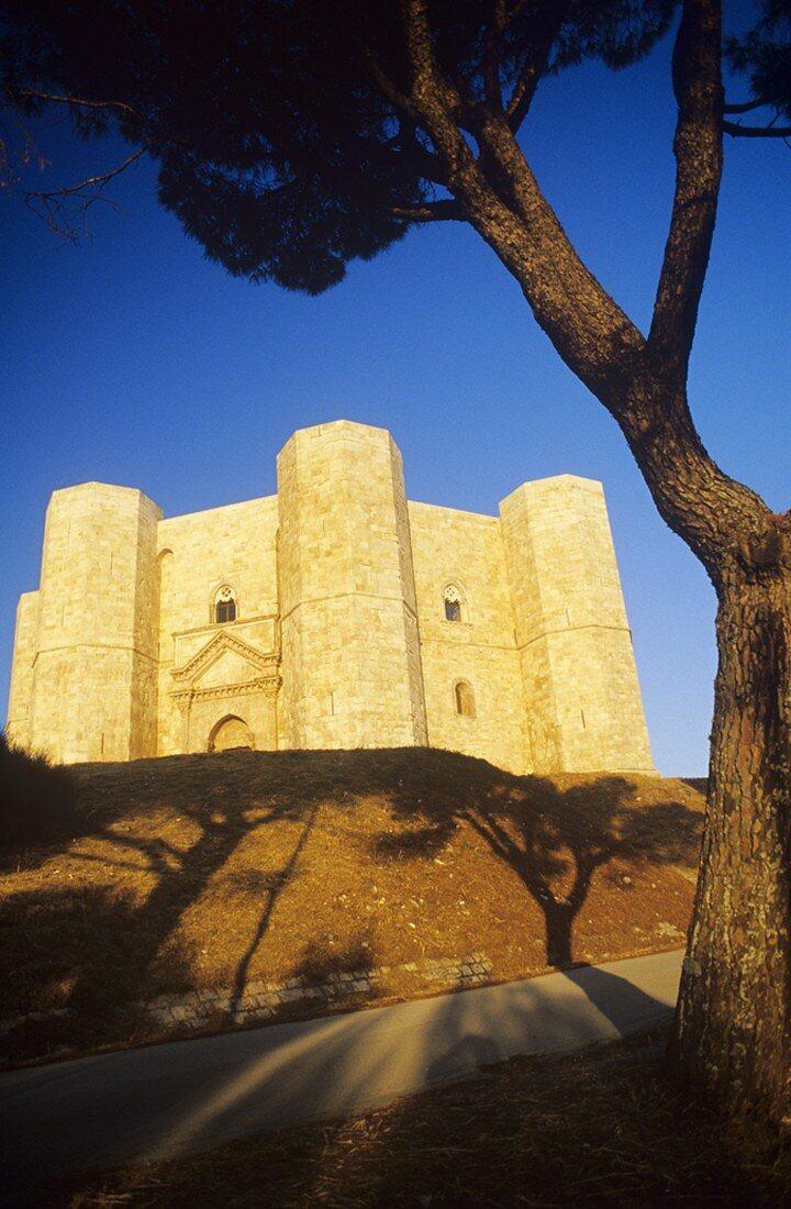 Castel del Monte, octagonal fortress, Apulia, Italy