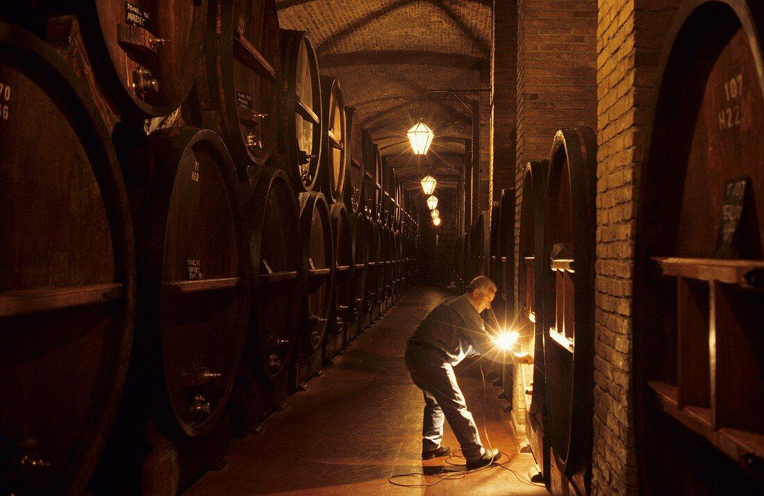 Wooden barrel cellar, Bodega Weinert, Lujan de Cuyo, Mendoza, Argentina