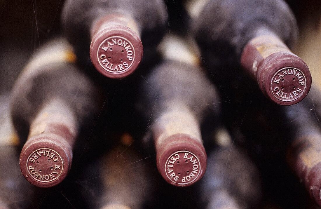 Old wine bottles, Kanonkop Cellars, Stellenbosch, S. Africa