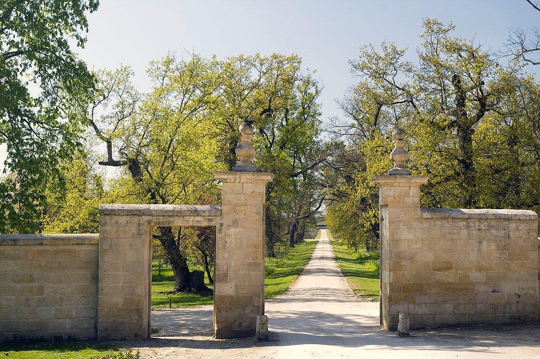 Avenue and park, Château Figeac, St-Émilion, France