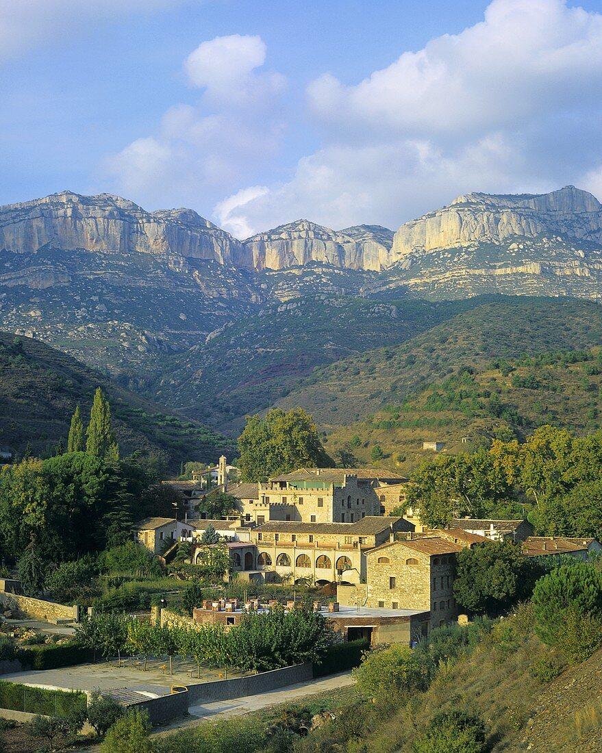 The wine village of Scala Dei, Priorato, Spain