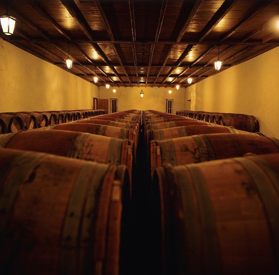Wine cellar of famous Château Pétrus, Pomerol, Bordeaux, France