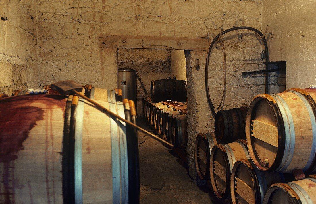 Wine cellar of Château le Pin, Pomerol, Bordeaux, France