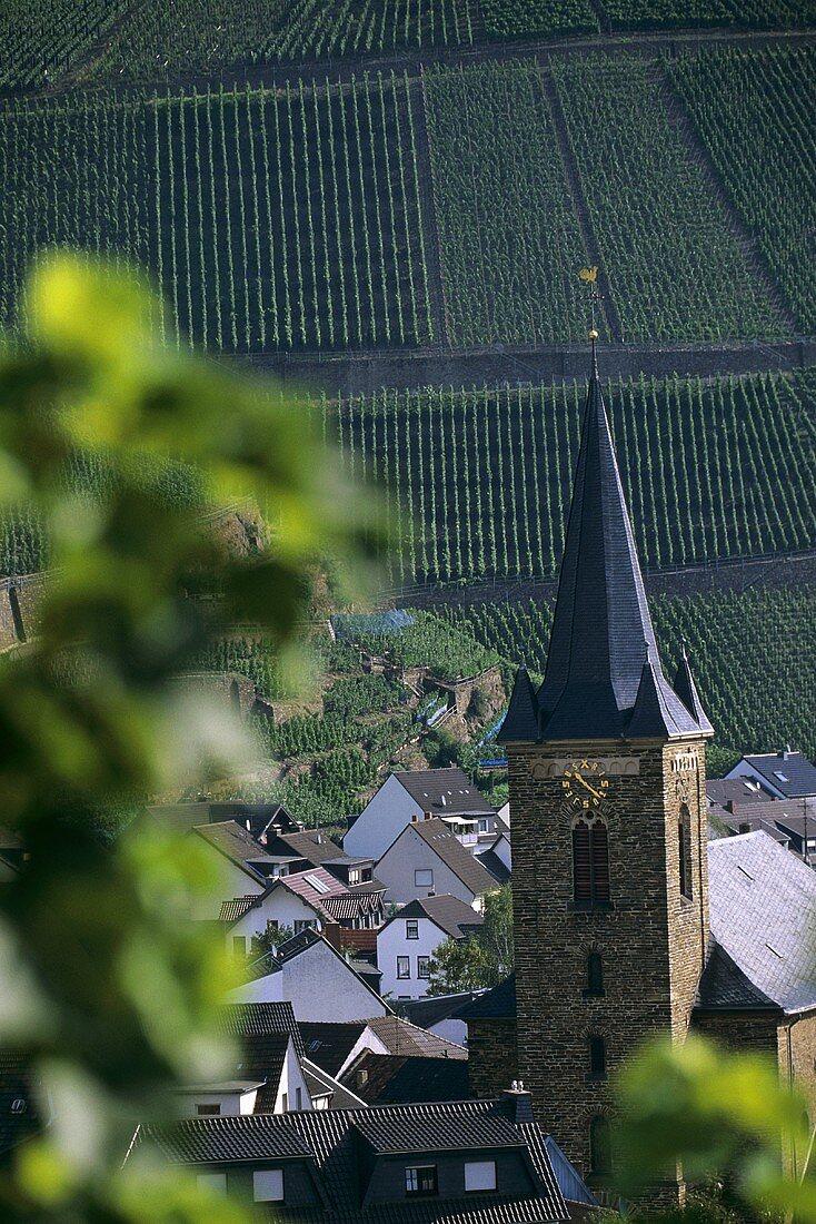 'Dernauer Pfarrwingert' Einzellage (single vineyard), Dernau, Ahr