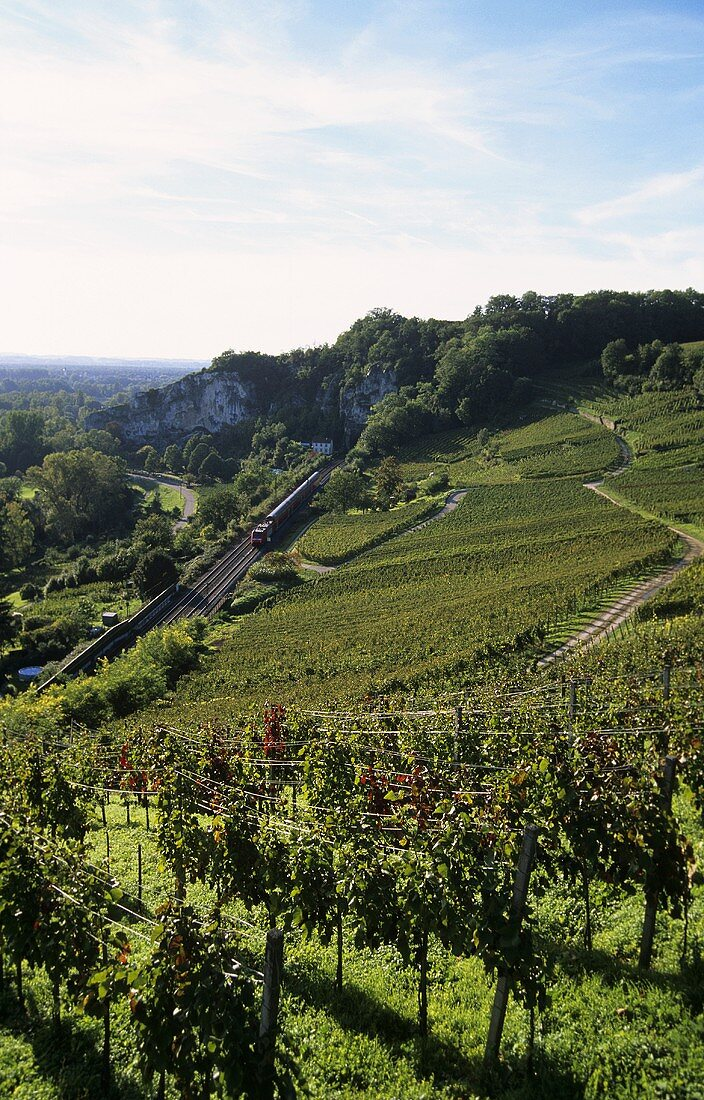 'Isteiner Kirchberg' Einzellage (single vineyard), Markgräflerland, Baden