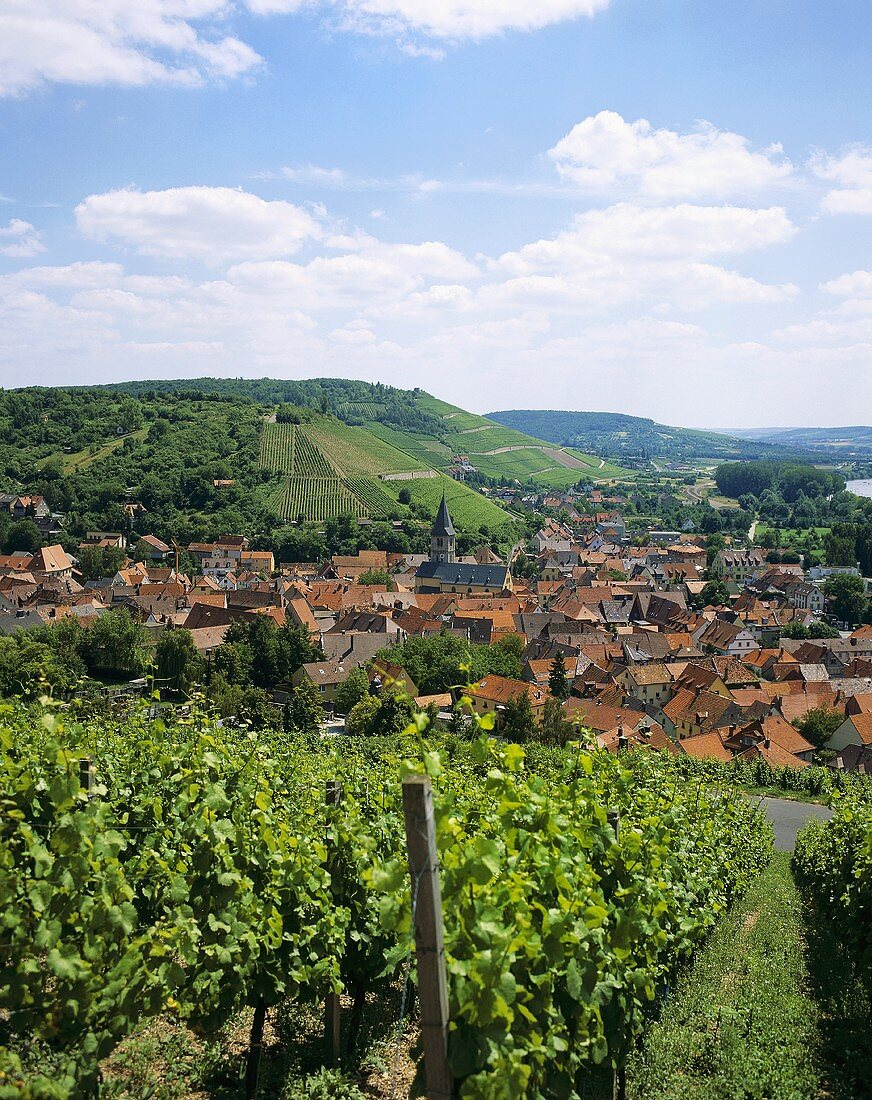 View over the wine village of Randersacker, Franconia, Germany
