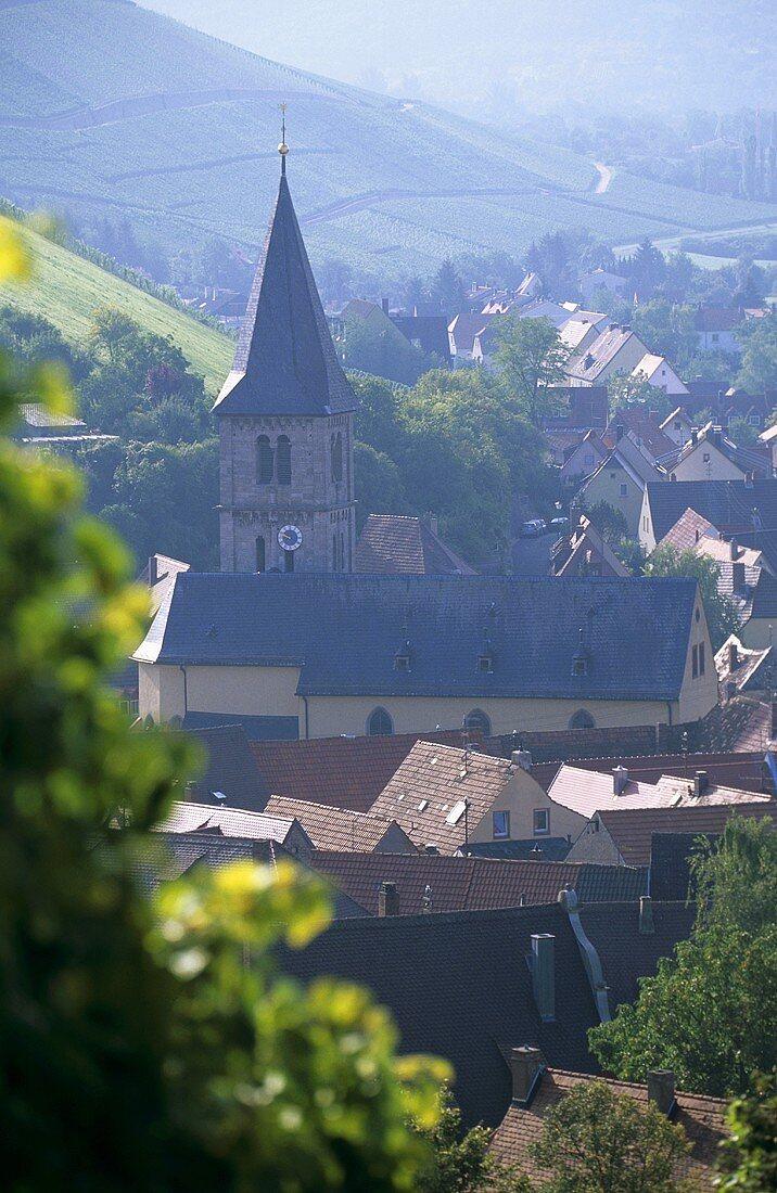 View of the wine village of Randersacker, Franconia, Germany