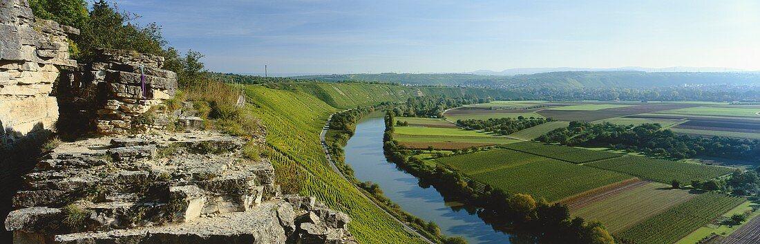 'Mundelsheimer Käsberg' (single vineyard), Württemberg, Germany