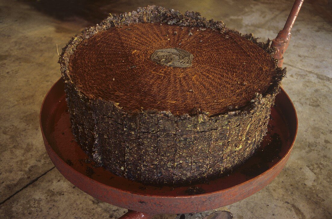 Press cake, Château Nairac, Sauternes, Bordeaux, France