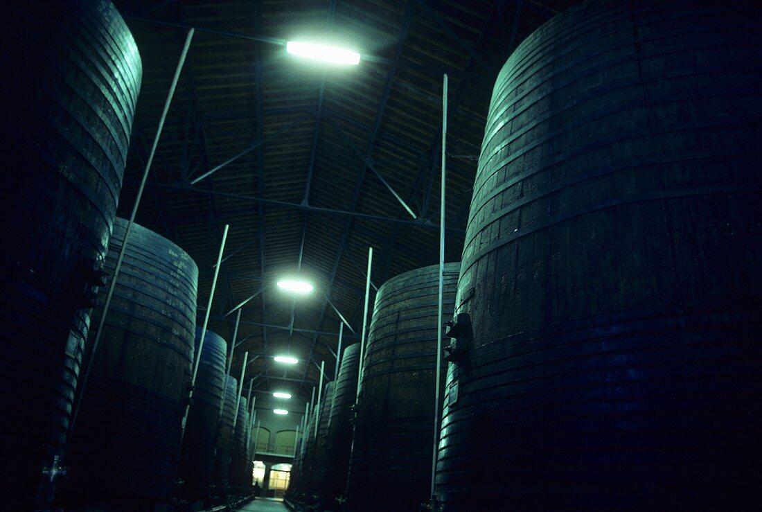 Fermentation tanks, Banyuls, Roussillon, France