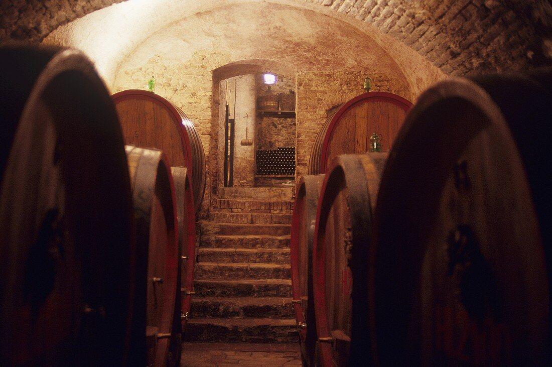 Barrel cellar of Avignonesi Estate, Montepulciano, Tuscany