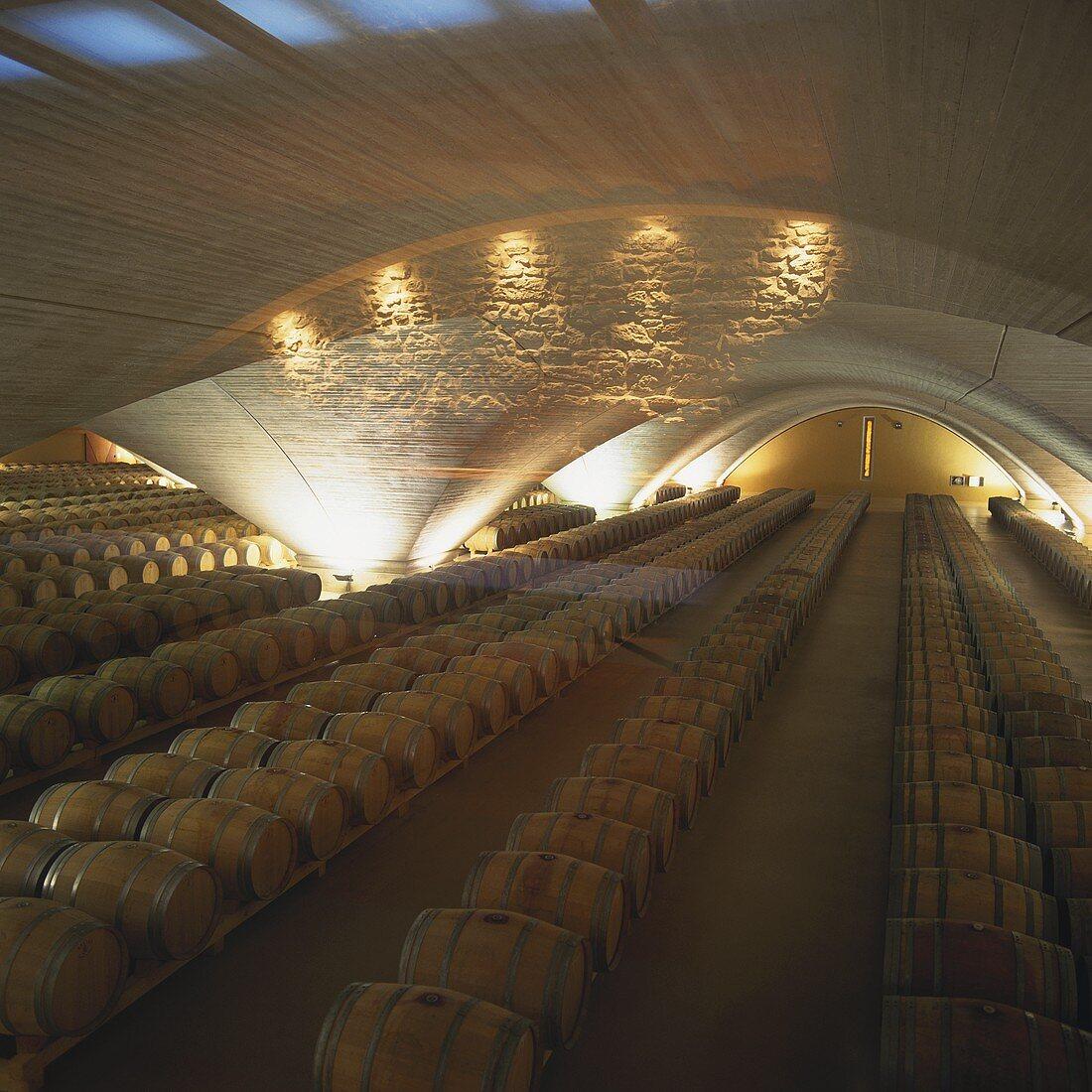 Wine cellar of Bodega Otazu, Navarra, Spain