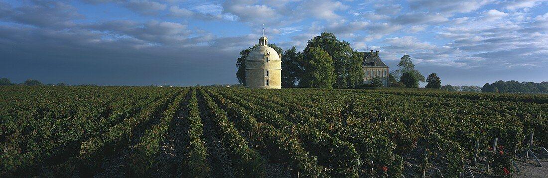 Château Latour, Pauillac, Médoc, Bordeaux