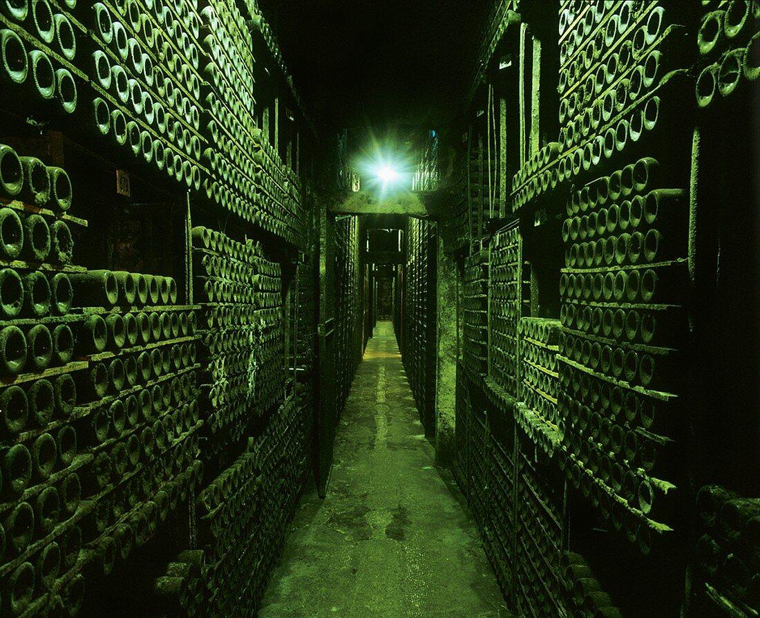 Cellar of Marqués de Riscal, Elciego, Rioja Alavesa, Spain