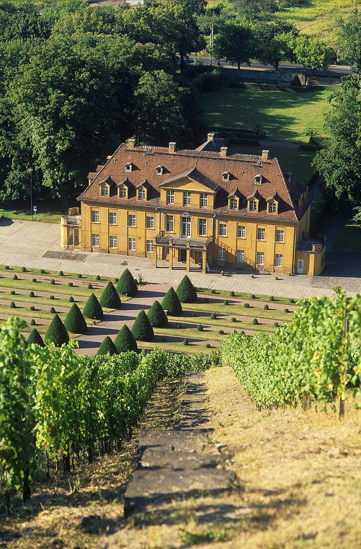 Schloss Wackerbarth, Radebeul, Saxony, Germany