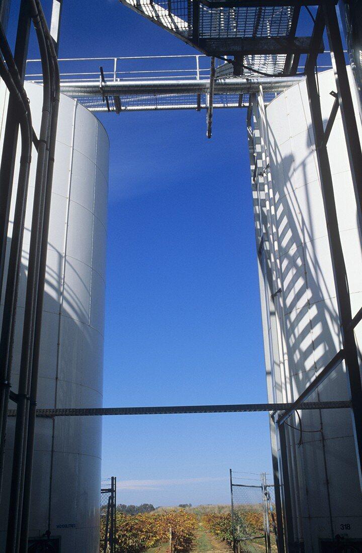 Fermentation tanks, Brown Brothers, Milawa, Victoria, Australia