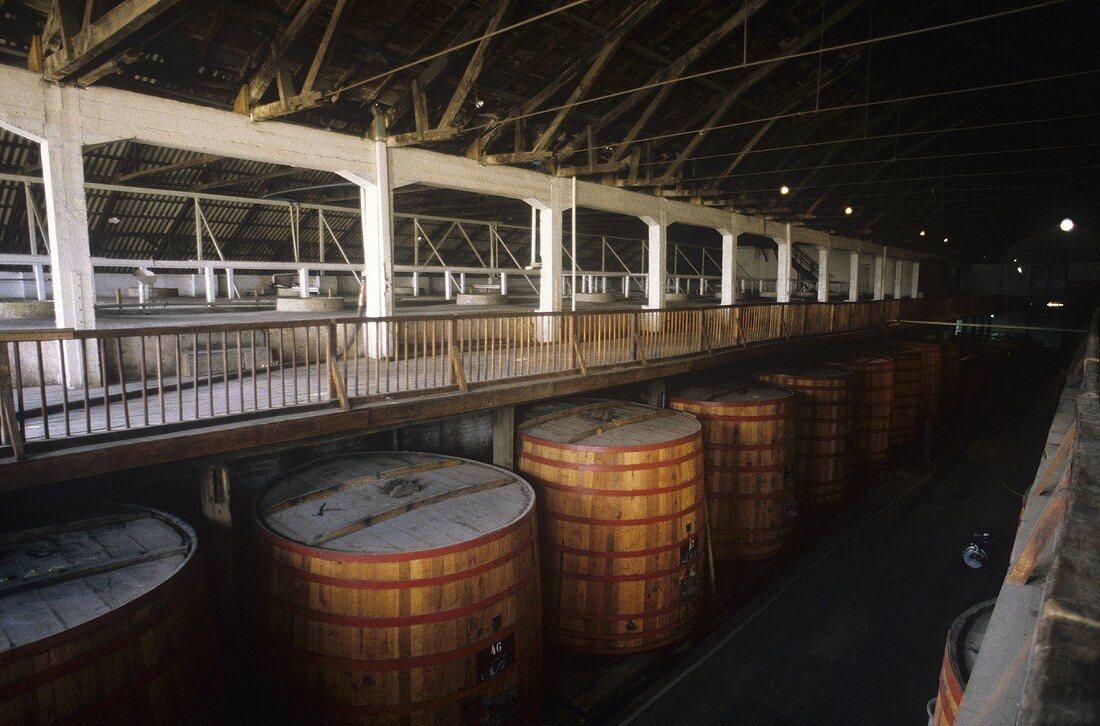 Wine tanks at Santa Rita Winery, Maipo Valley, Chile
