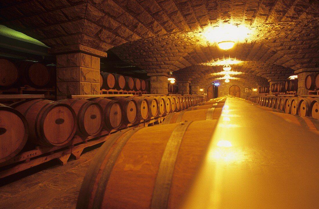 Wine cellar of Chateau Changyu-Castel, Shandong, China